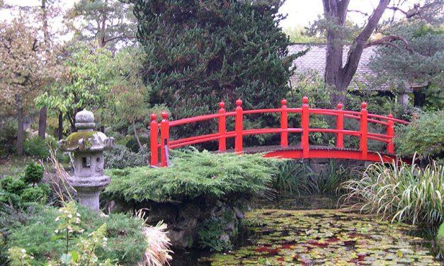 D04 Japanese Gardens